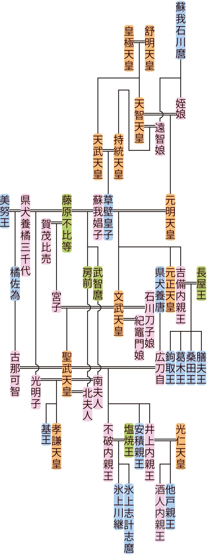 文武天皇~孝謙天皇・称徳天皇の系図