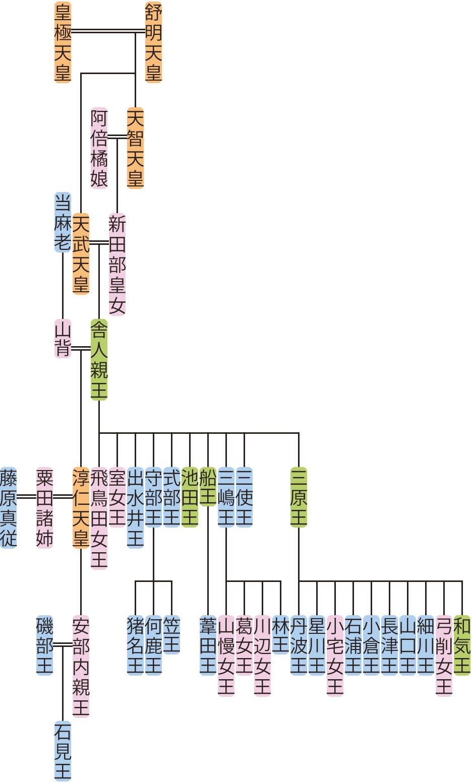 舎人親王・淳仁天皇の系図