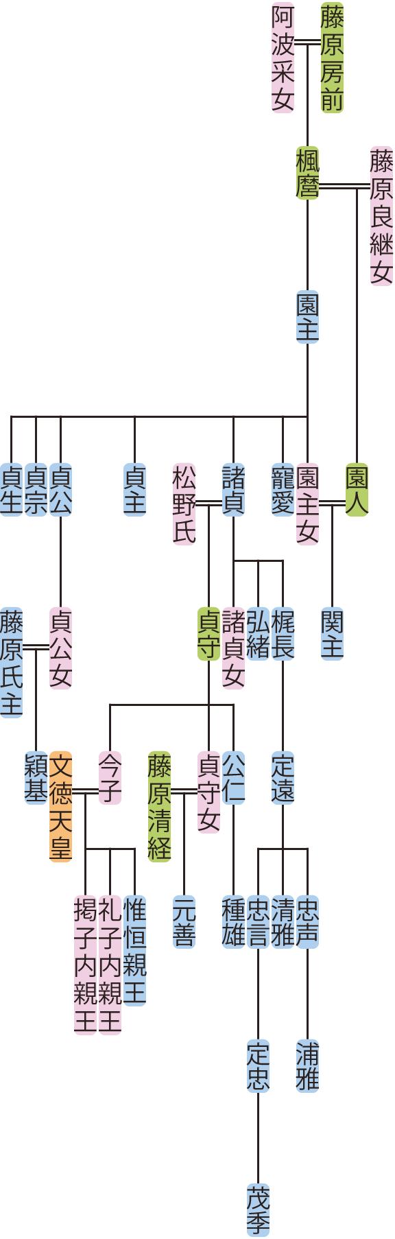 藤原園主の系図