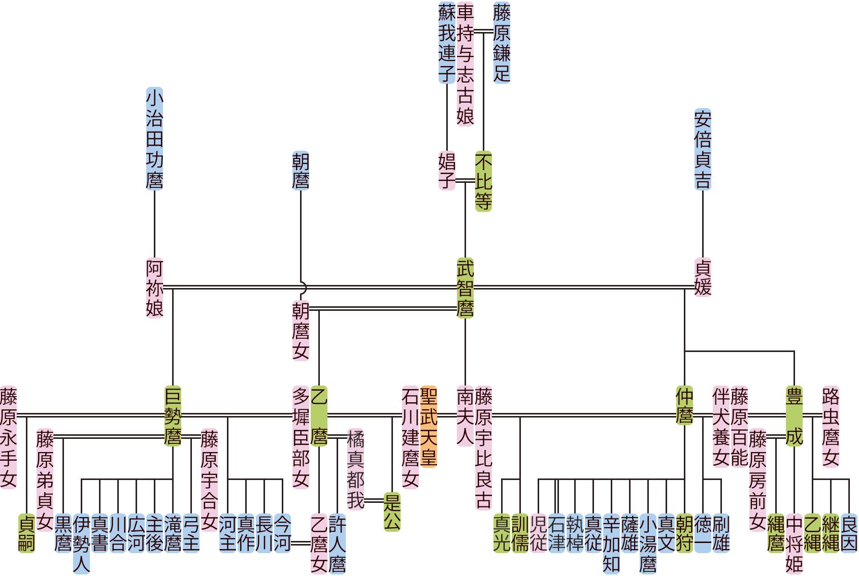 藤原武智麿の系図