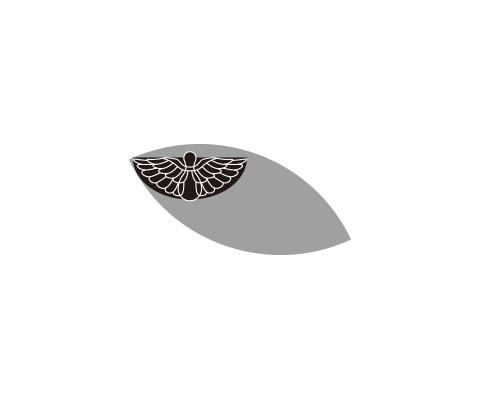 尾長鳥の羽を描く