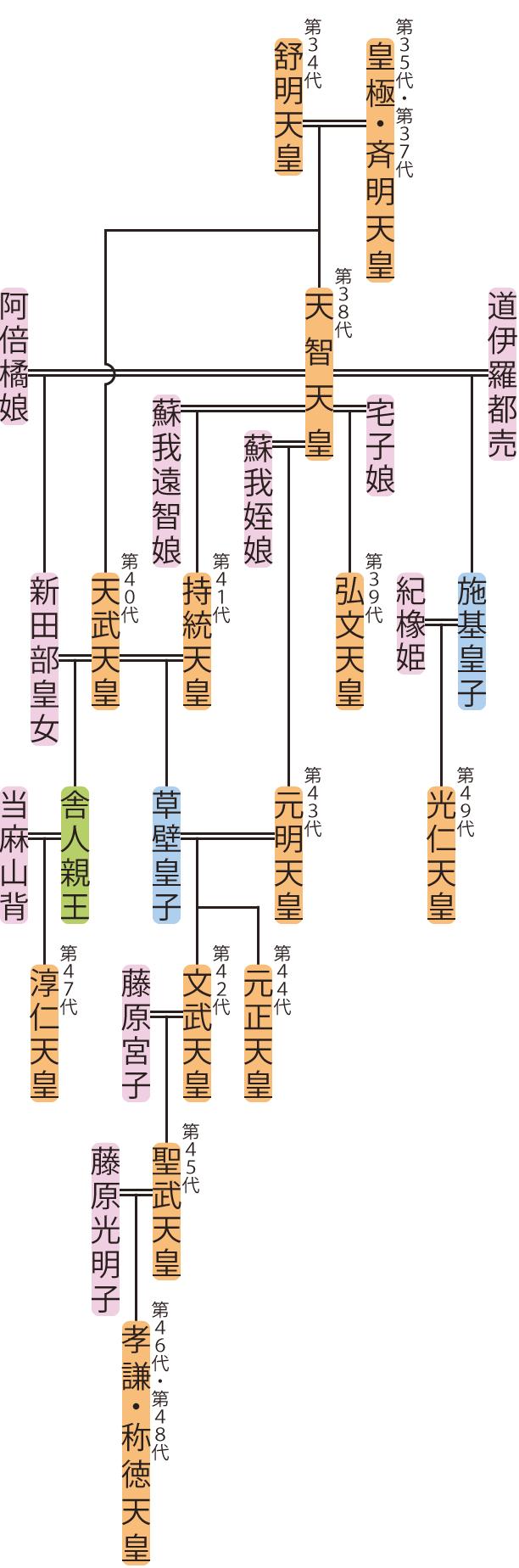 天智天皇~称徳天皇の略系図