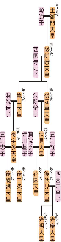 後嵯峨天皇~花園天皇の略系図