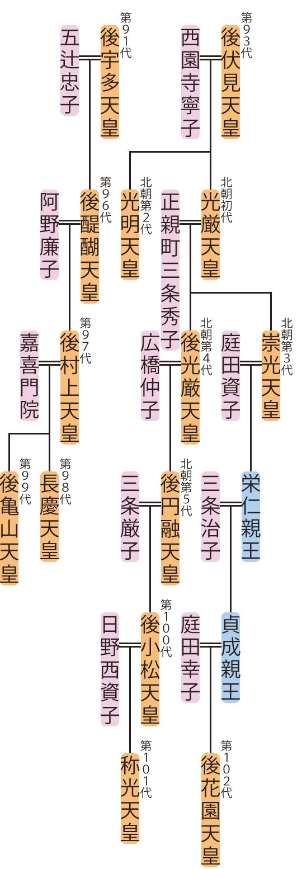 後醍醐天皇~称光天皇の略系図