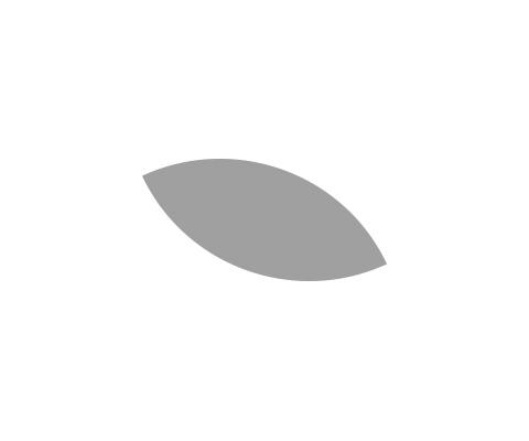 尾長鳥のパーツを描くスペースを明確にする