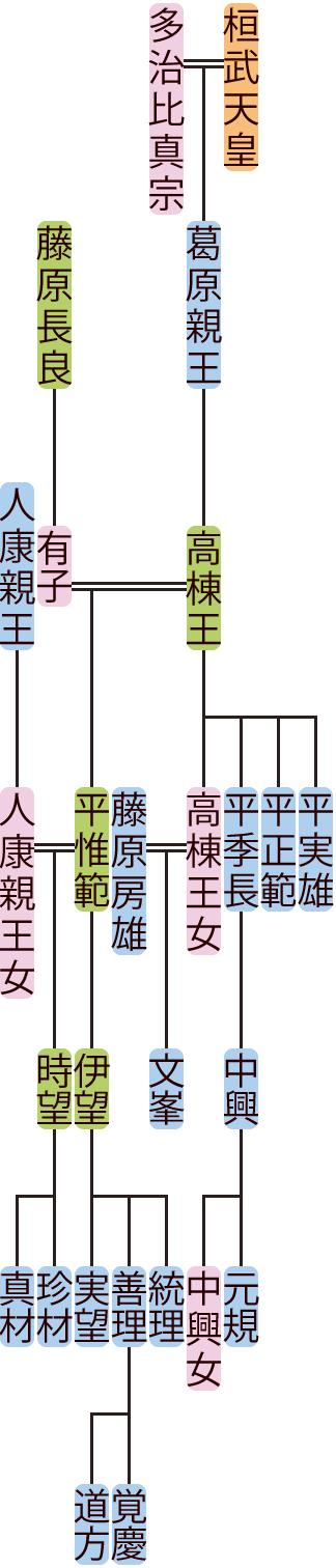 高棟王・平惟範の系図