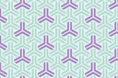 組亀甲のパターン12