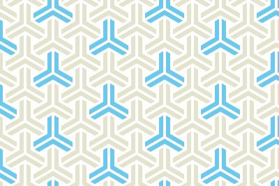組亀甲のパターン8