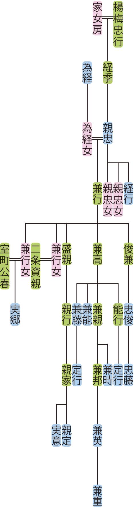 楊梅親忠の系図
