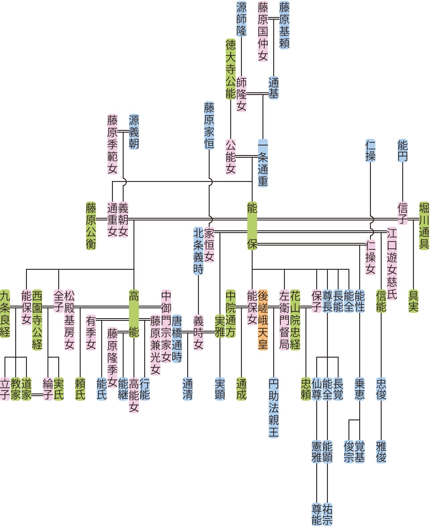 一条通重・能保の系図