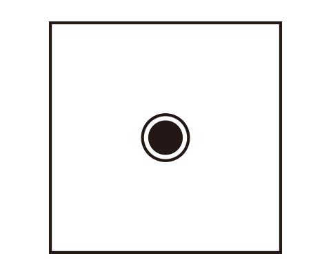 中心の円を描く