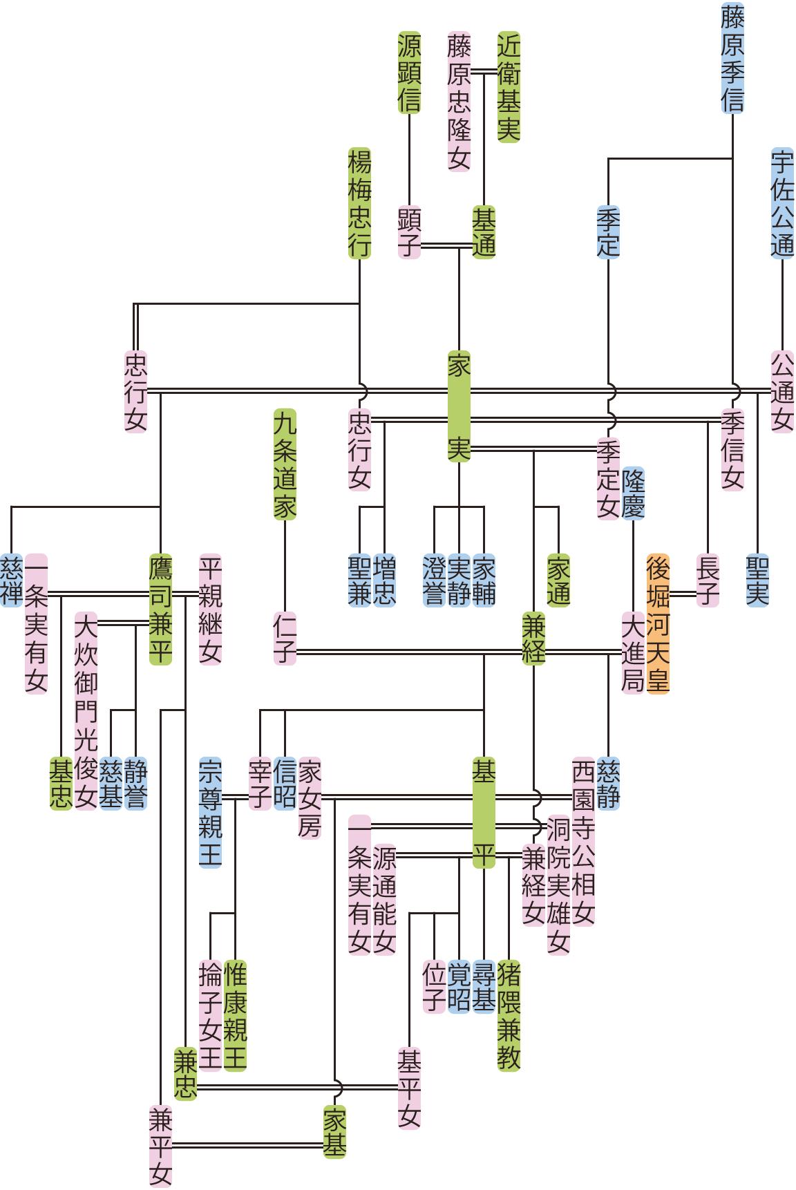 近衛家実・兼経の系図