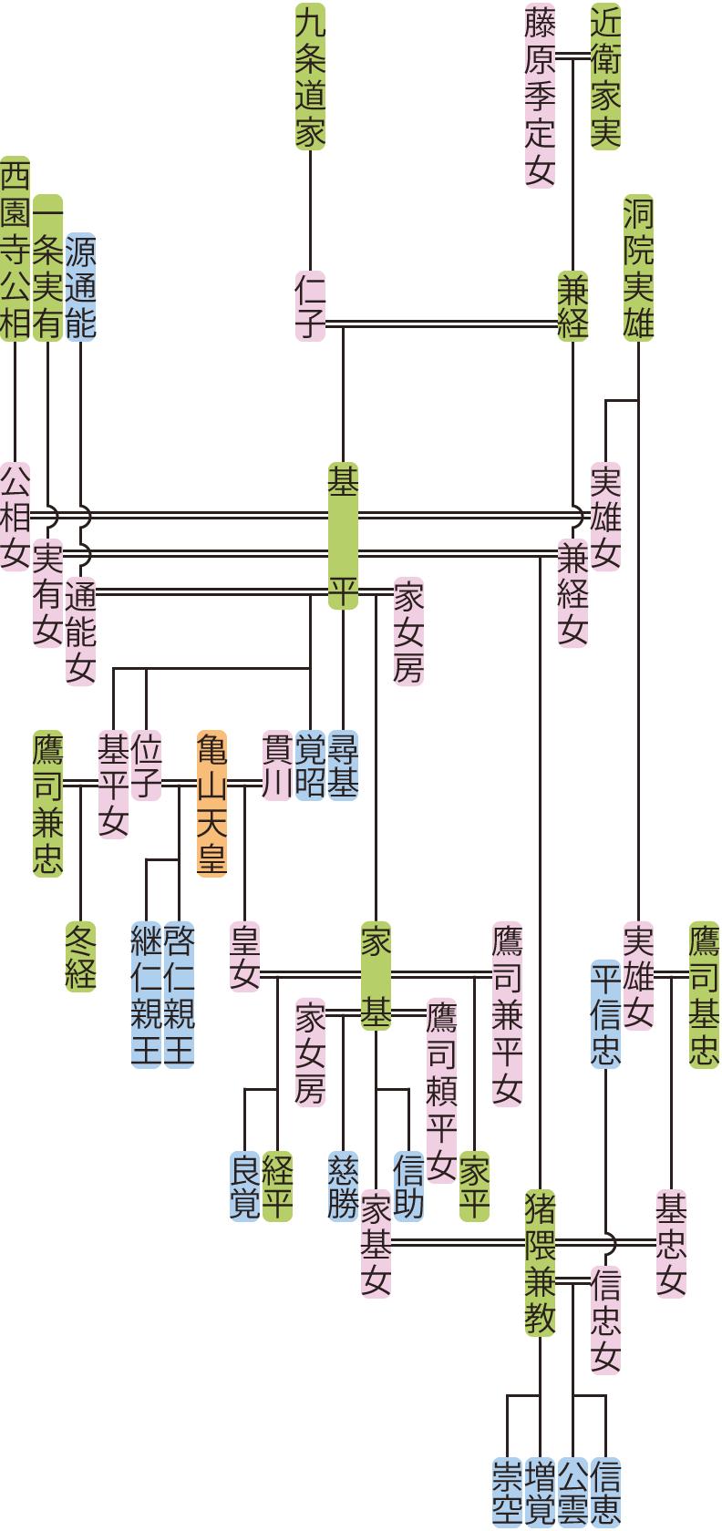 近衛家基の系図