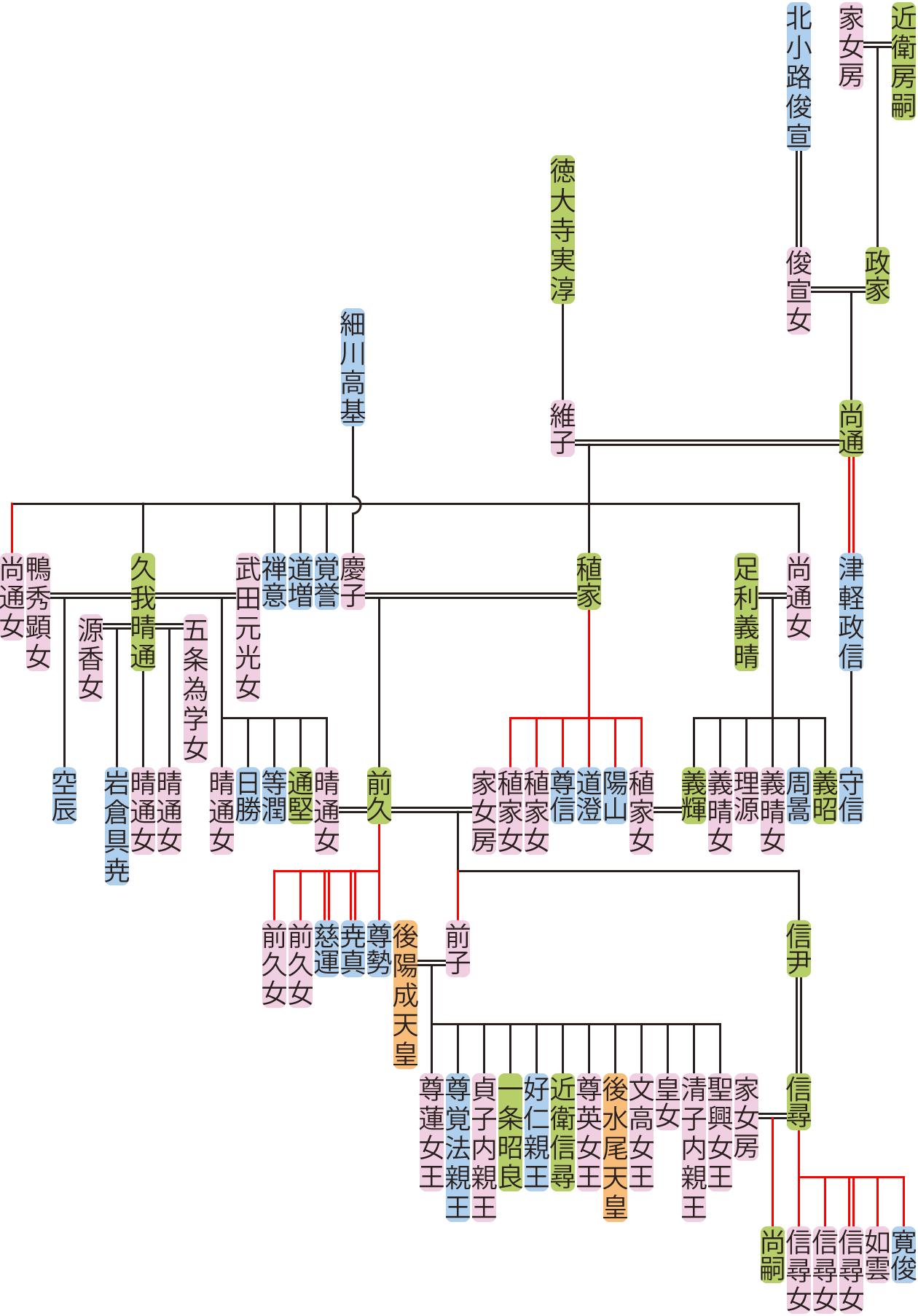 近衛尚通~信尹の系図