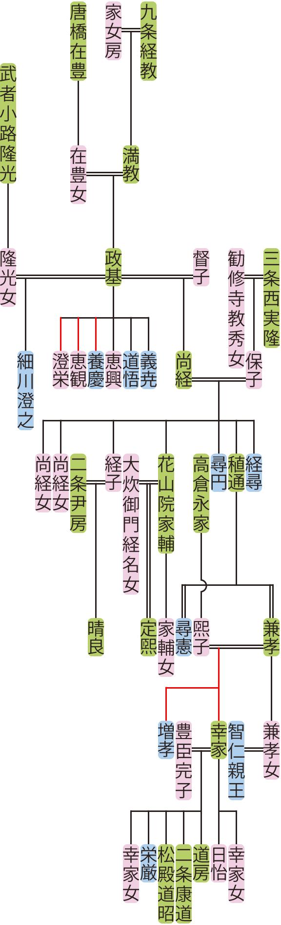 九条政基~兼孝の系図