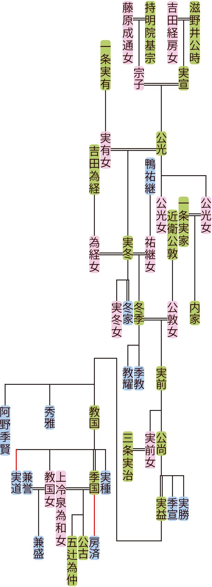 滋野井公光~教国の系図
