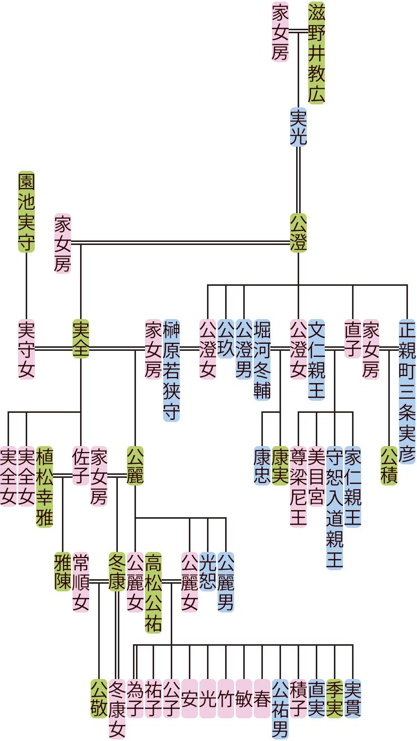 滋野井公澄~公麗の系図