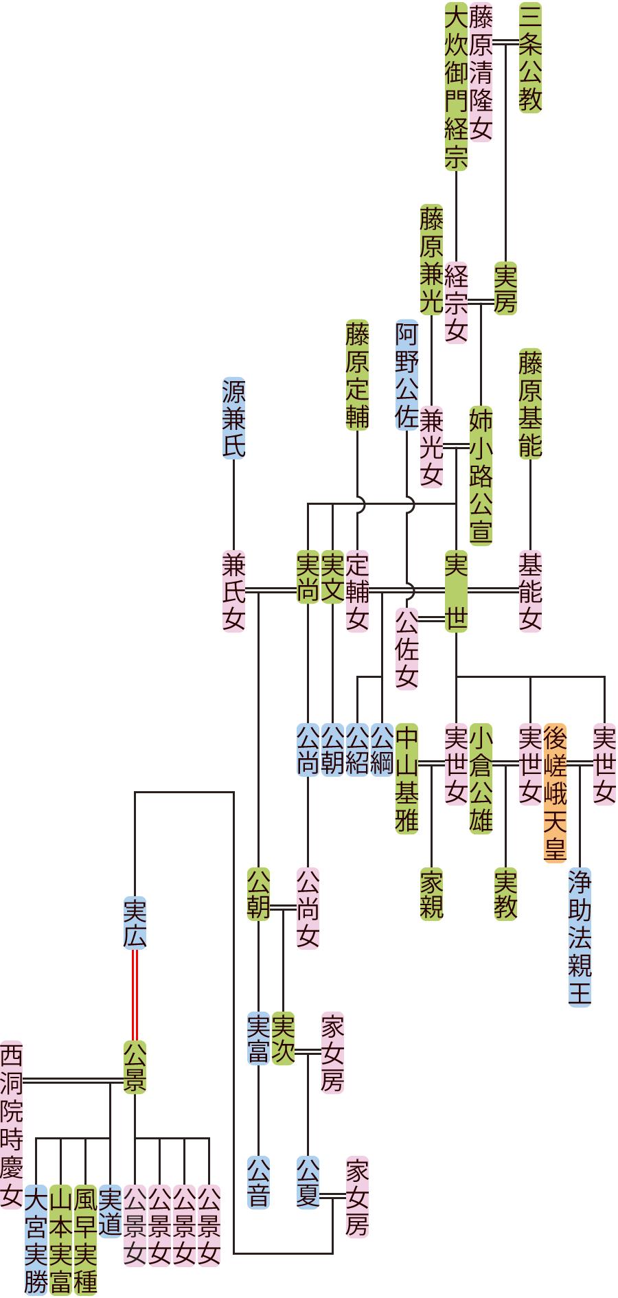 姉小路公宣~実広の系図