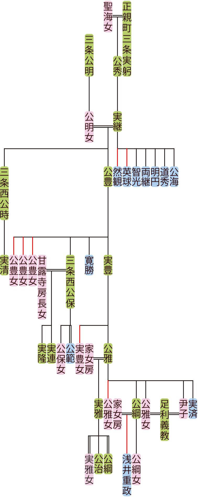 正親町三条実継~公雅の系図