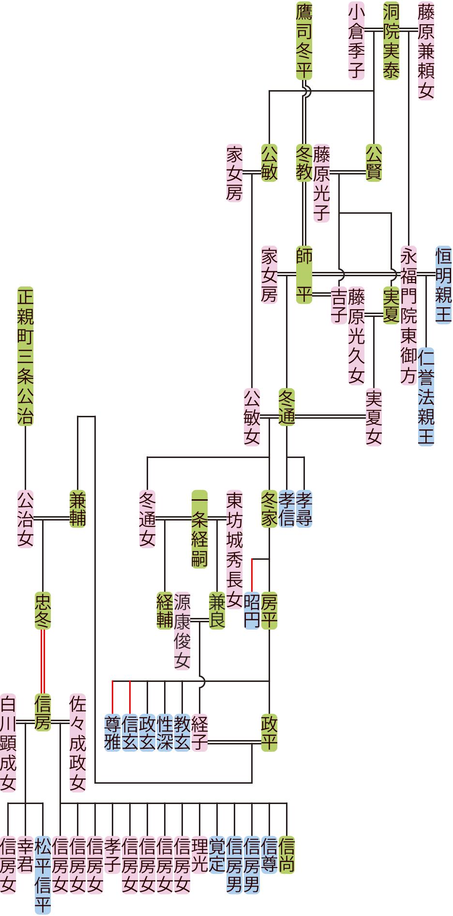 鷹司師平~忠冬の系図