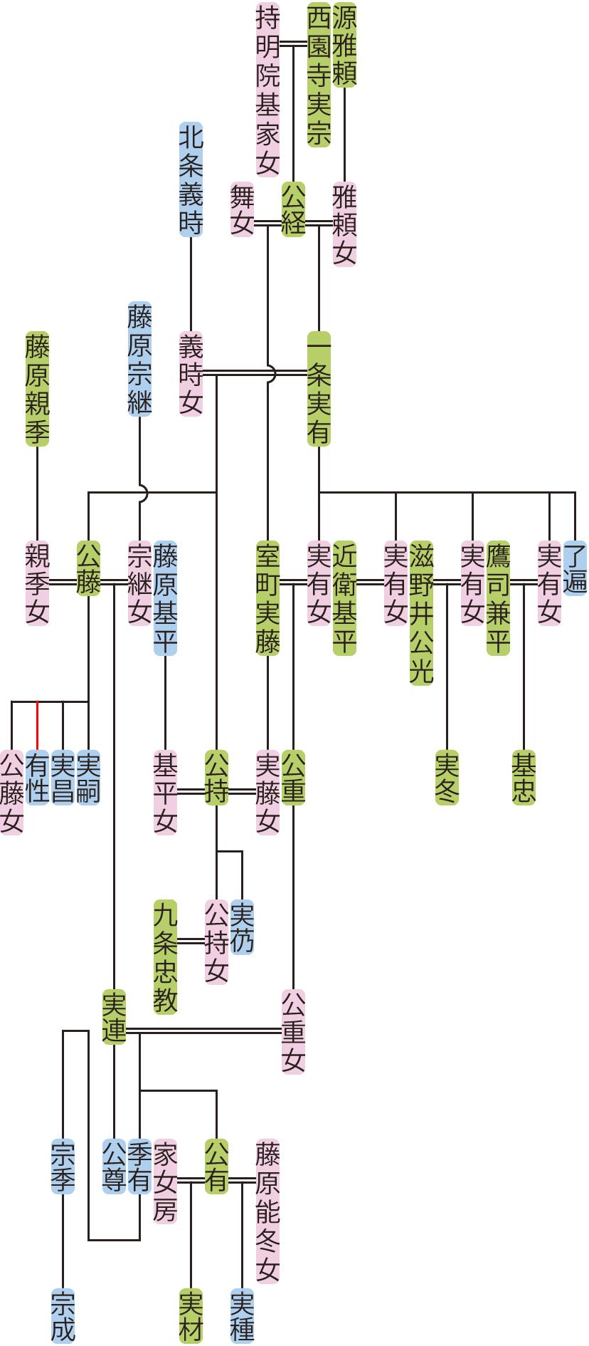 一条実有~実連の系図