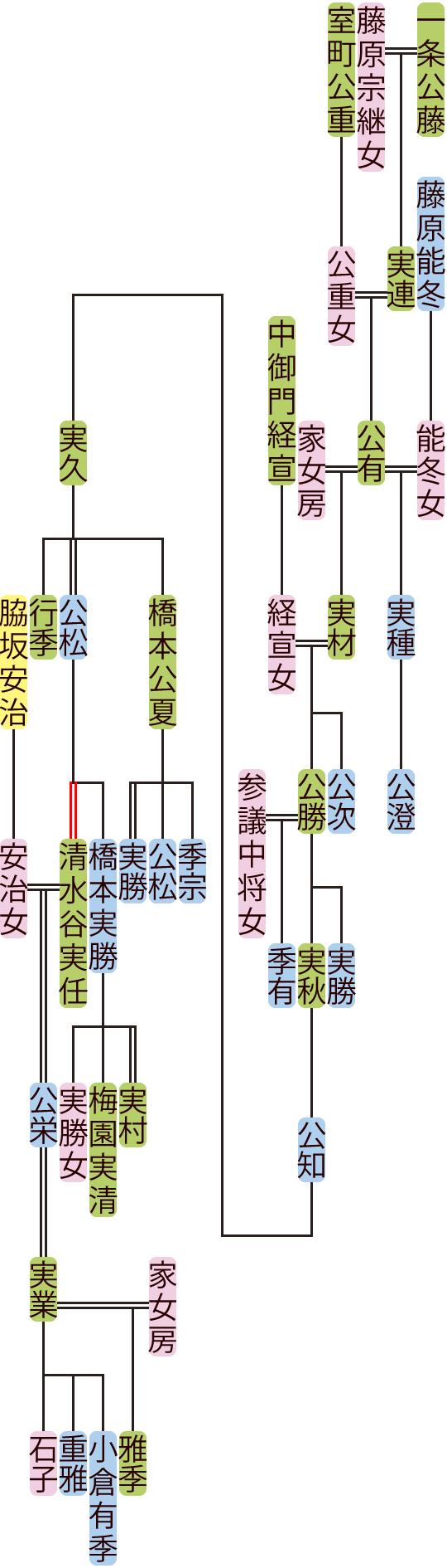 一条公有~清水谷公栄の系図