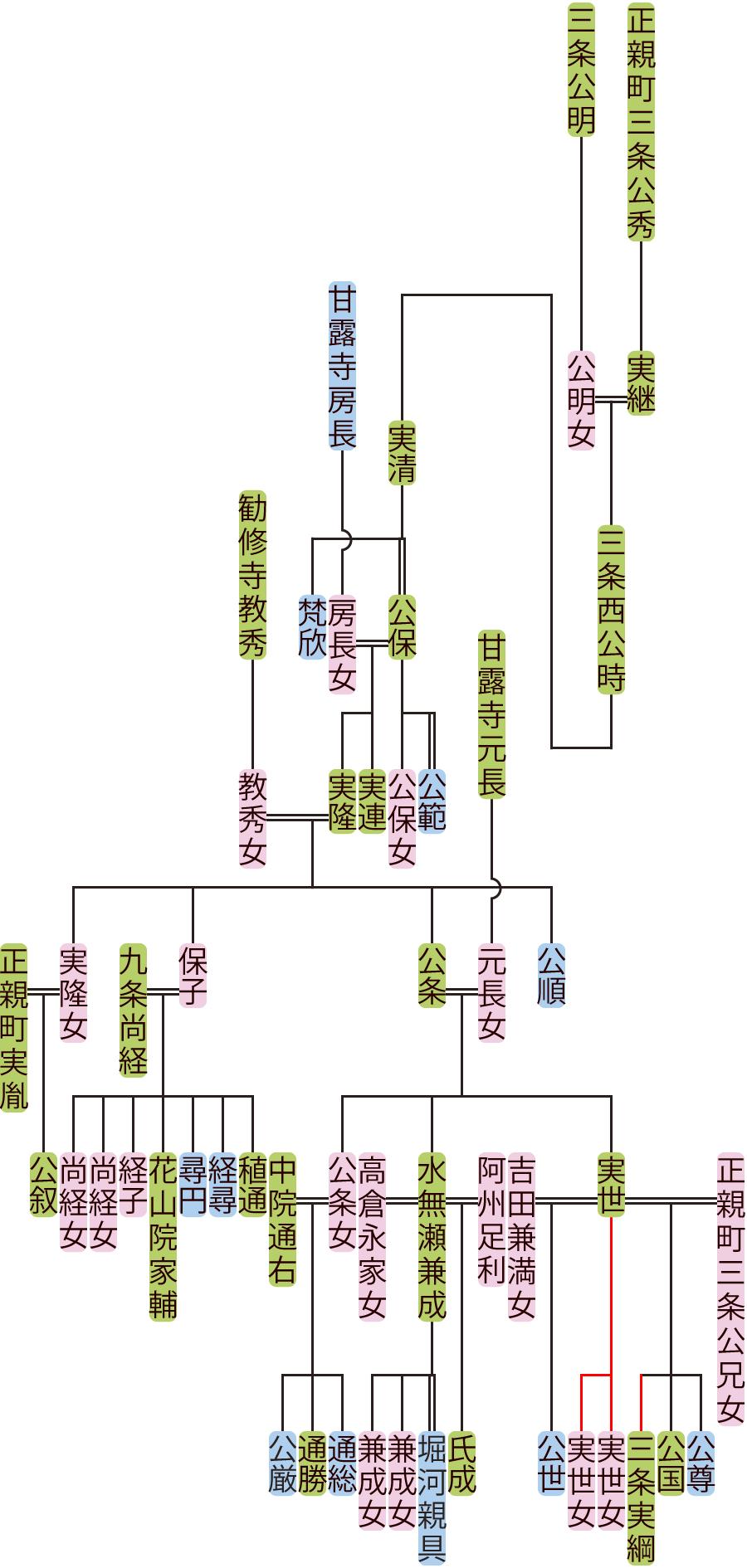 三条西公時~公条の系図