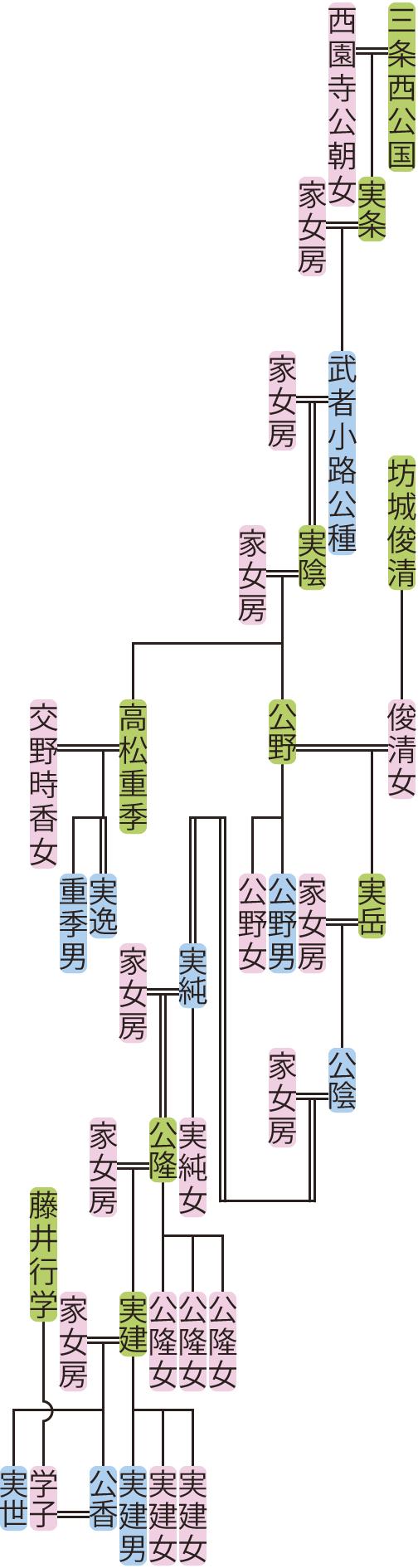 武者小路公種~公香の系図